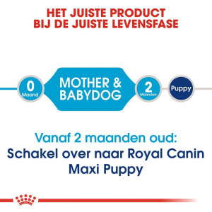 Royal Canin Maxi Starter Mother and Babydog hondenvoer