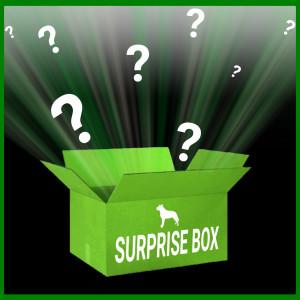 Brekz Surprise Box Limited Edition til hunde