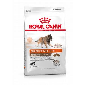 Royal Canin Sporting Energy 4300 hondenvoer
