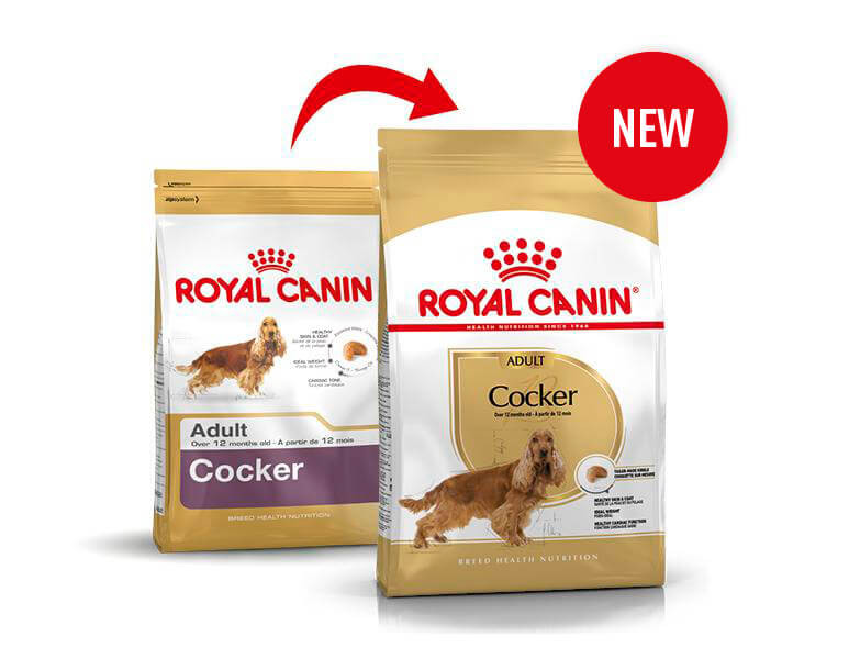 Royal Canin Adult Cocker Spaniel hondenvoer