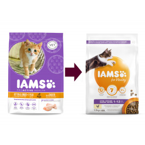 Iams Kitten & Junior Kip kattenvoer