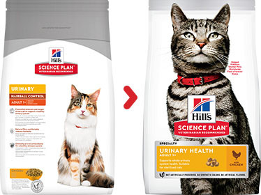 Hill's Urinary Health Hairball Control Adult kattenvoer