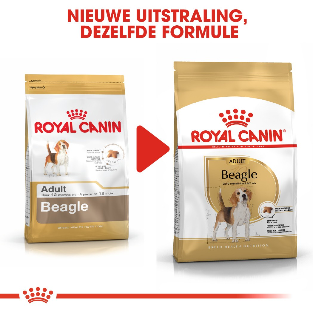 Royal Canin Adult Beagle hondenvoer