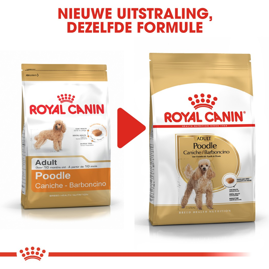 Royal Canin Adult Poodle hondenvoer