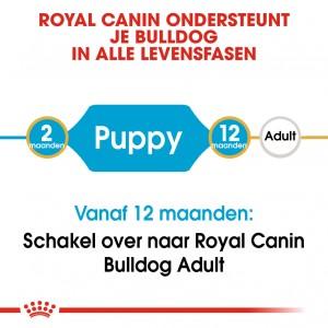 Royal Canin Puppy Bulldog hondenvoer