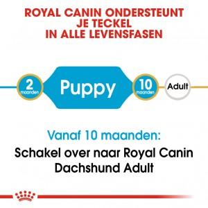 Royal Canin Puppy Dachshund/Teckel hondenvoer