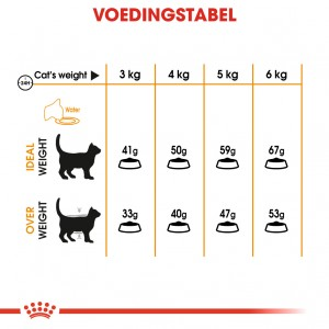 Royal Canin Hair & Skin Care kattenvoer