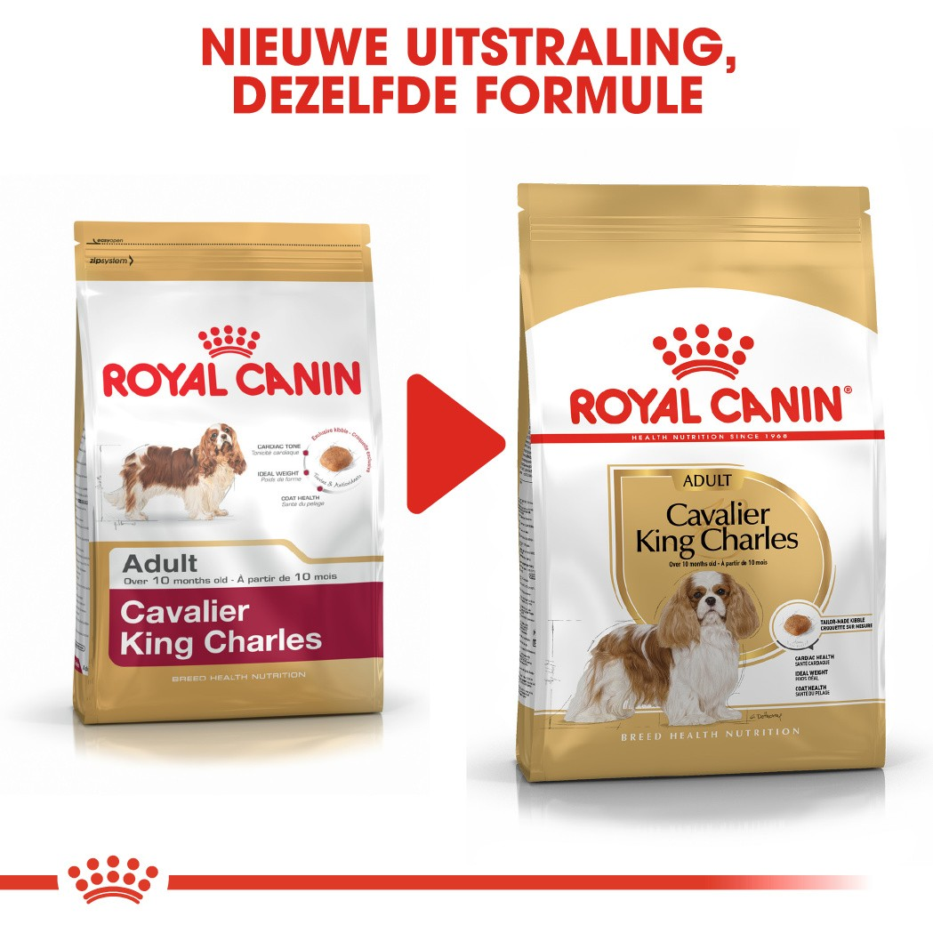 Royal Canin Adult Cavalier King Charles hondenvoer