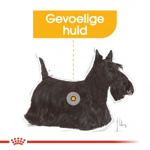 Royal Canin Mini Dermacomfort hondenvoer