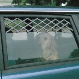 Ventilatierooster voor de auto