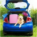Hond mee op reis